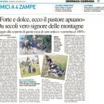 articolo nazione