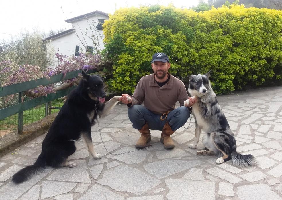Il Cane Da Pastore Apuano A Viva La Terra 2016 Maneggio Apuo Ranch